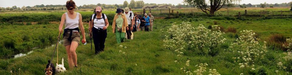 Norfolk walks