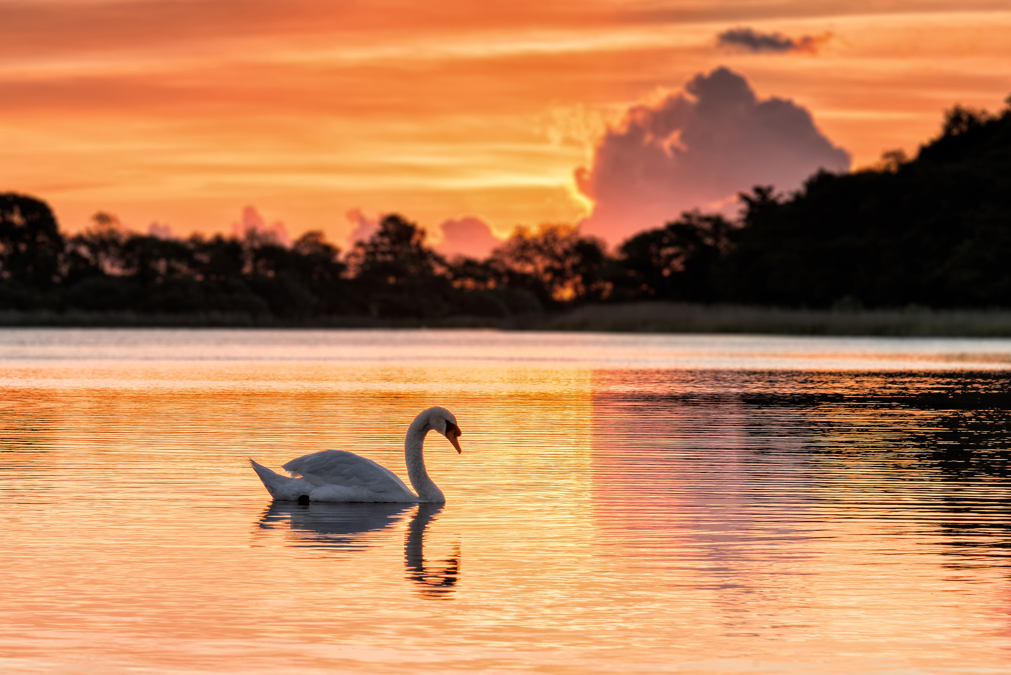 how to get to the norfolk broads